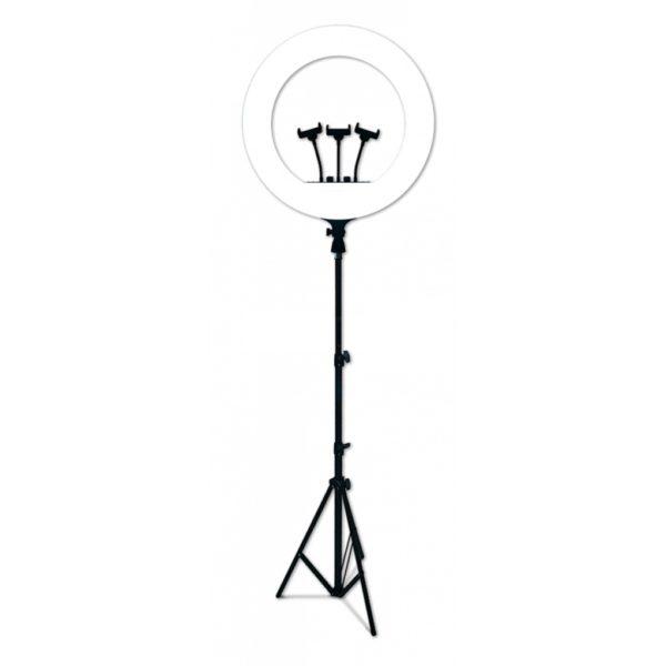 Светодиодная кольцевая лампа 54 см RL-21